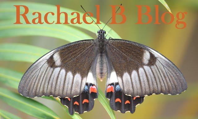 Rachael B's Blog