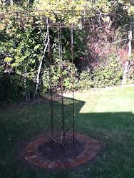 tree trellis