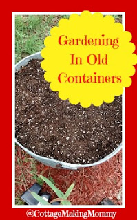 Gardening in Old Containers
