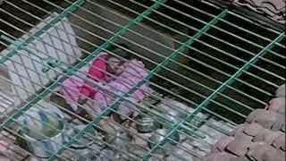 Hot Hindi Movie 'Nakhrewale' Watch Online