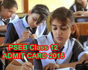 Punjab Board Class 12 Supplementary Exam Admit Card July 2015 Download Now, PSEB Sr Secondary Admit Card 2015 for Supplementary Exams July, PSEB 12th Admit Card Supply, Punjab Board Supplementary 12th Class Admit Card 2015 Online, PSEB Sr. Secondary Class 12 Admit Card 2015