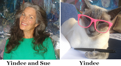 Avatar of Yindee on InfoBarrel (aka Sue) and her boss cat Yindee (used with permission)