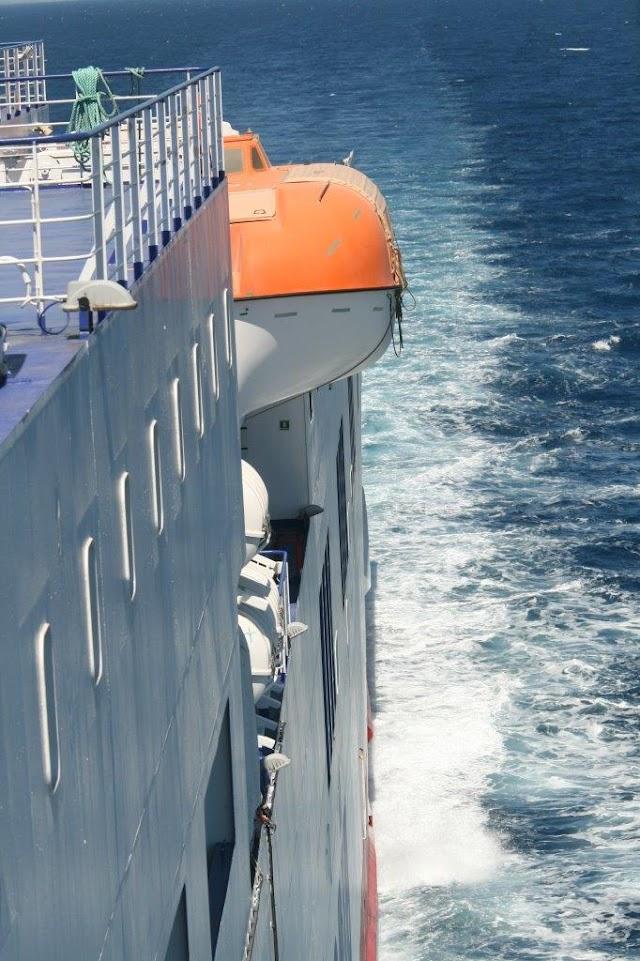 Tirrenia e Ispra ancora insieme per lo studio dei cetacei