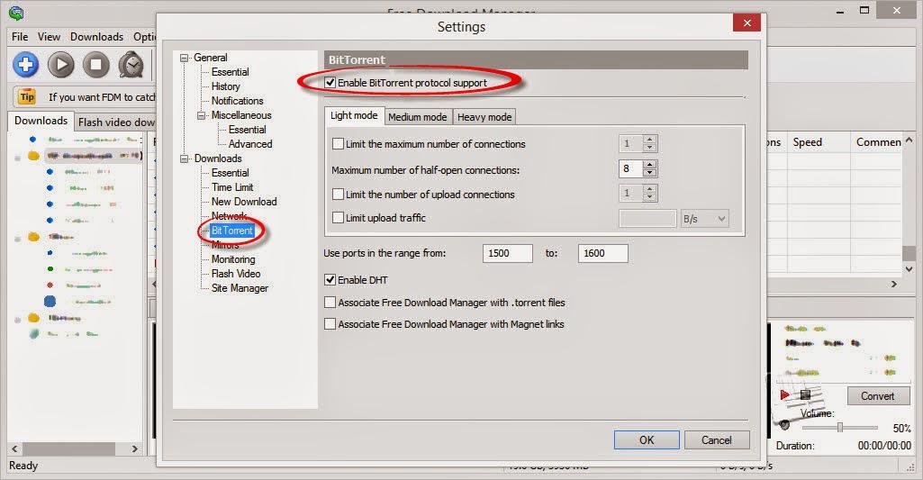 Download Bit Torrents on IDM Free