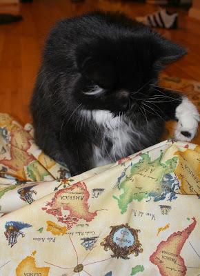 DIY World Map Pillows - Aria Helps