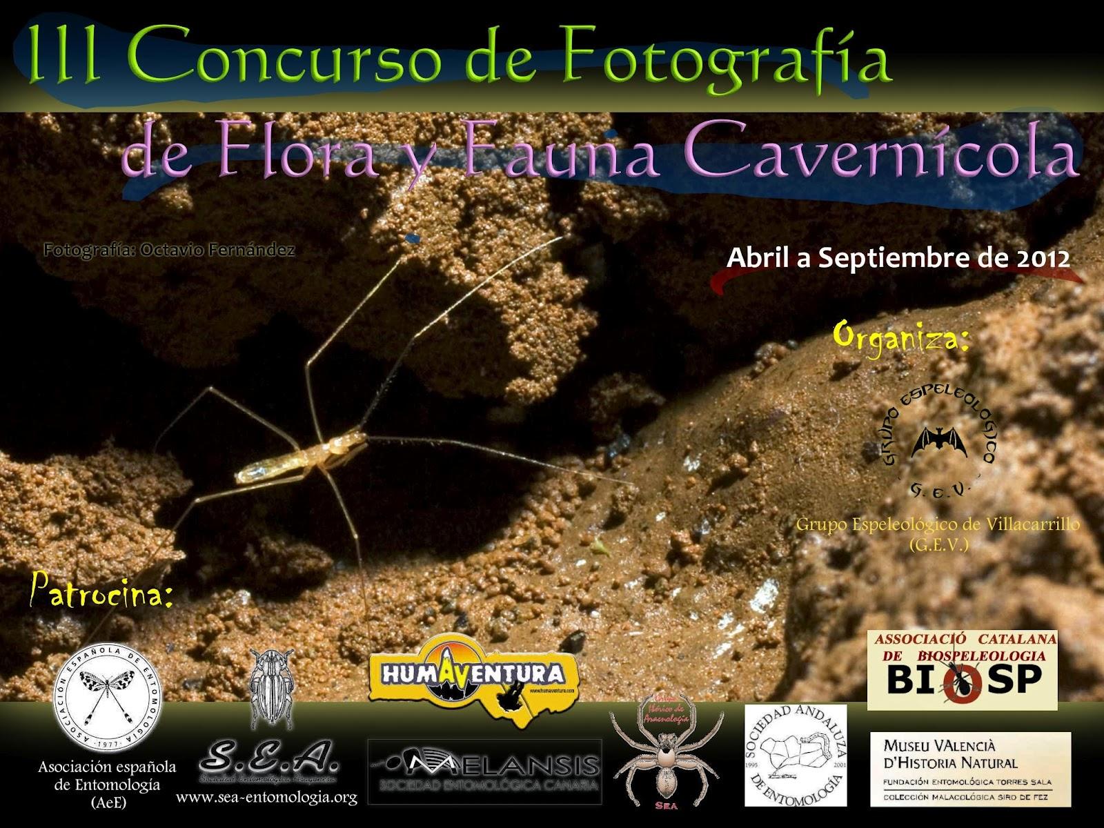 III Concurso Internacional de Fotografía de Flora y Fauna Cavernícola