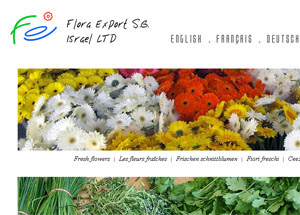 Flora Export S.G. Israel LTD new website version