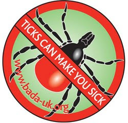 Tick Awareness