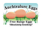 Auchtralure Eggs