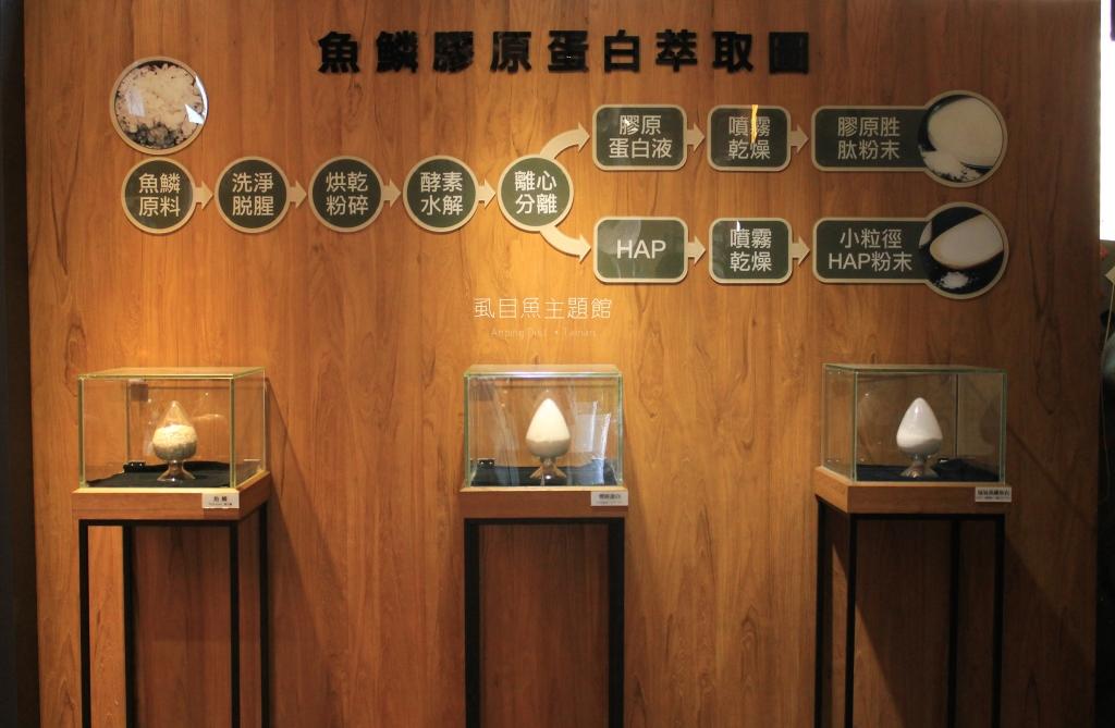 台南安平景點,虱目魚主題館-14
