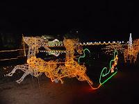 トナカイの馬車、カップルは記念写真を撮っていた!