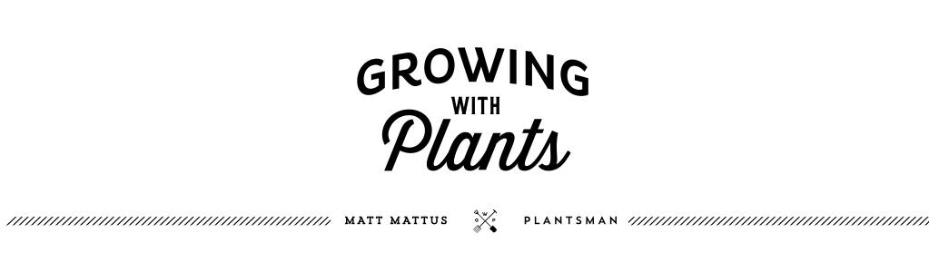 Growing with plants