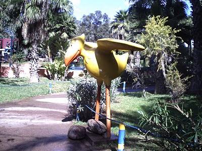 صور حديقة الطيور 4