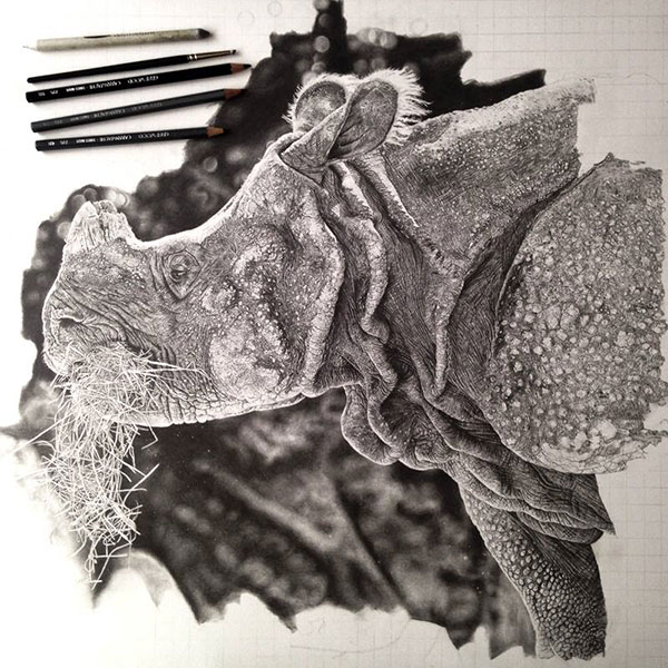 Drawings by Monica Lee