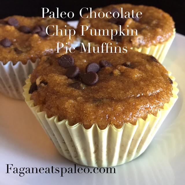 Paleo Chocolate Chip Pumpkin Pie Muffins