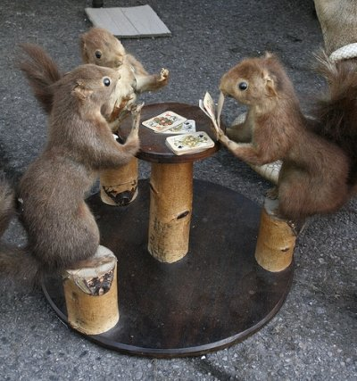 Squirrel Gathering