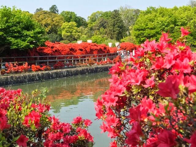 """八条宮智仁親王が、境内の東側に""""八条ヶ池""""を築造された。"""
