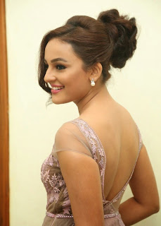 Seerat Kapoor Stills at Tiger Movie Audio Launch 5.jpg