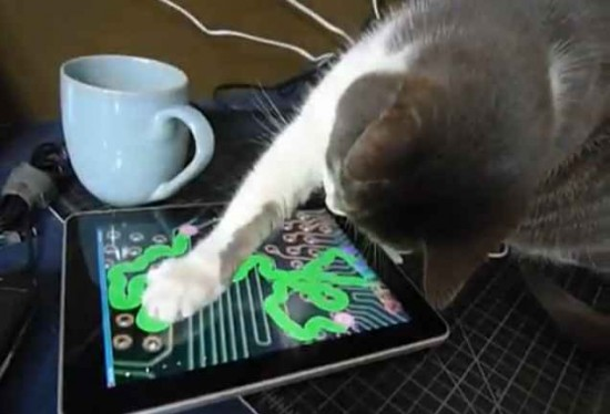 cat and technology