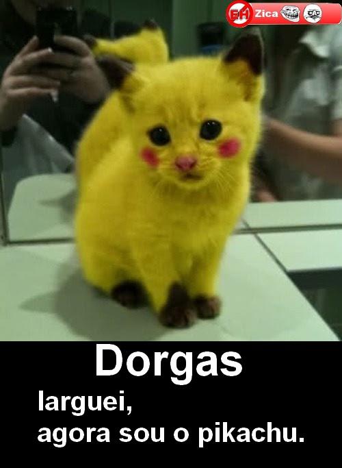 Roodando: Pikachu da vida real
