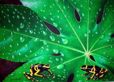 animales-selva
