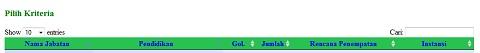 Formasi CPNS 2013 Pelamar Umum yang Sudah Ditetapkan, Lihat formasi2.menpan.go.id