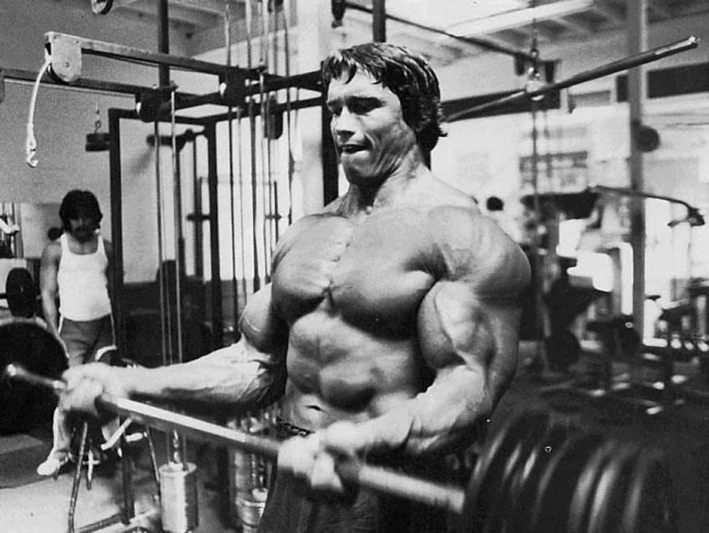 Wallpaper Sea: arnold ...