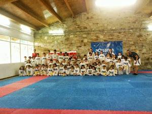 DBOK Escuela de Taekwondo