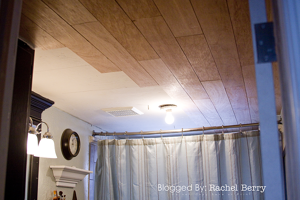 { Planked Bathroom Ceiling }