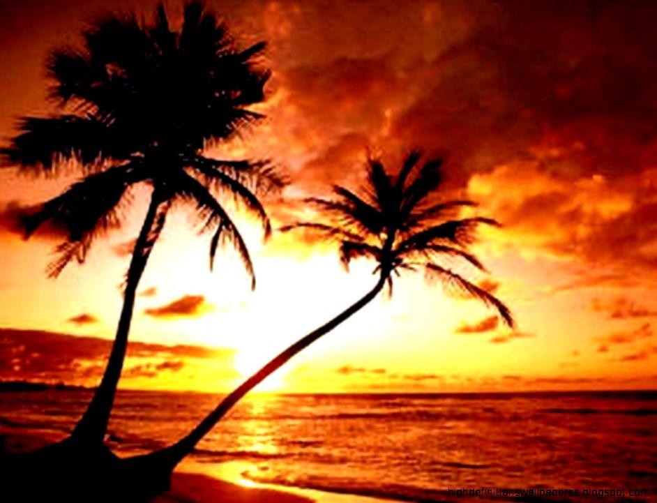 Tropical Beach Sunset Hd Wallpaper Desktop