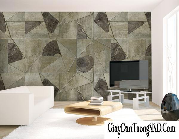 Sử dụng giấy dán tường Trung Bình cho phòng khách
