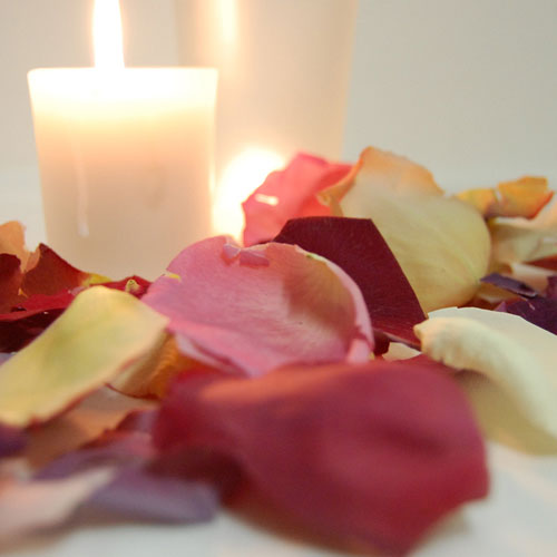 With Rose Petals Ideas And Inspiration From The Real Flower Petal