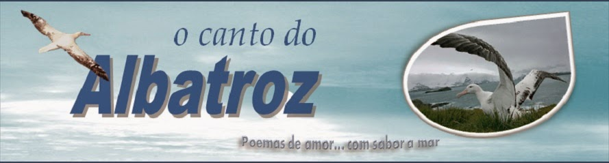 O Canto do Albatroz