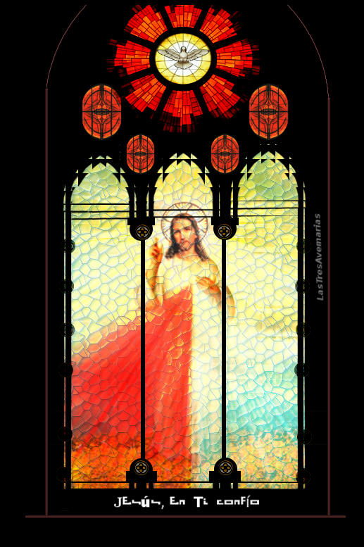 divina misericoedia vitra