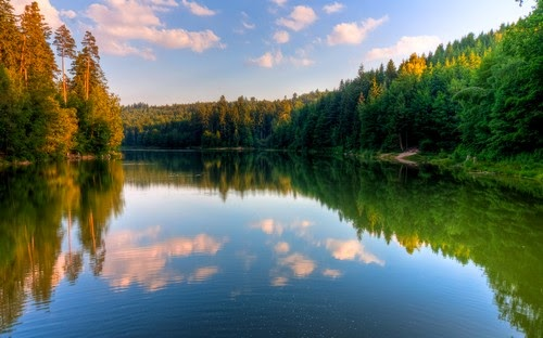 Nature Widescreen Pack