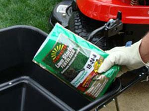 put starter fertilizer for grass