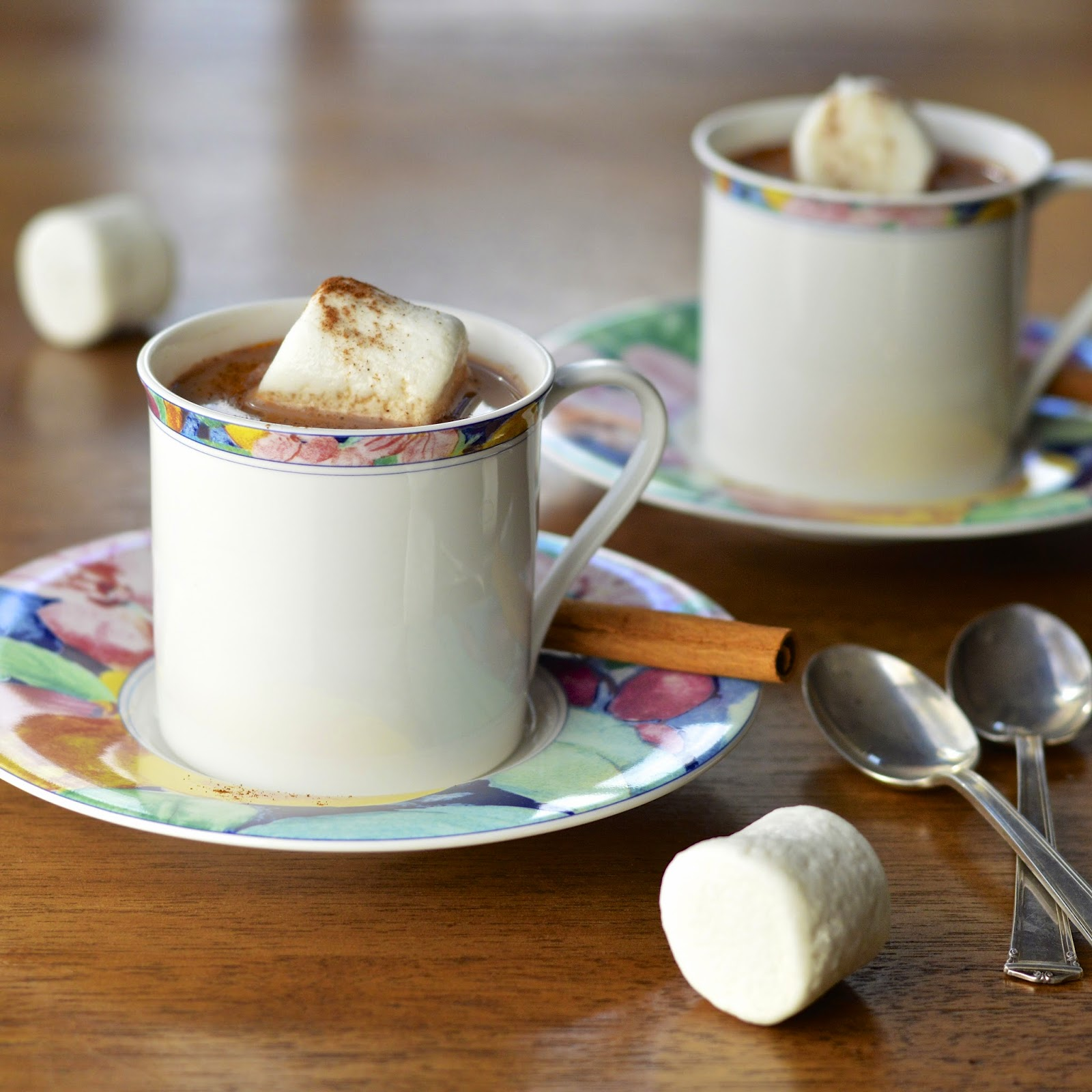 Mexican Hot Chocolate - Lactose Free | Virtually Homemade: Mexican ...