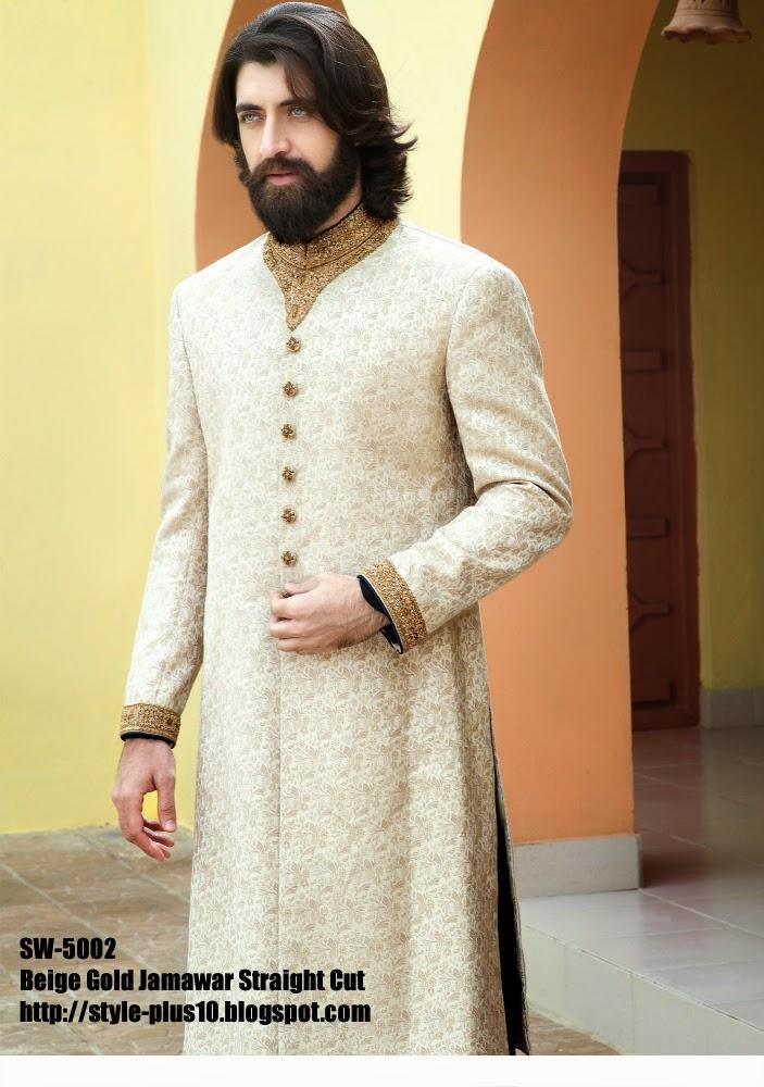 amir-adnan-sherwani-7
