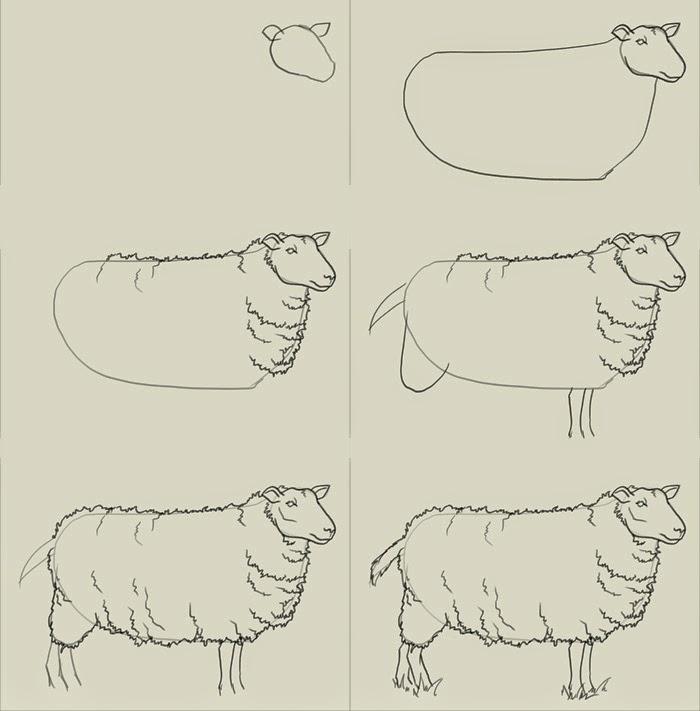 овца картинки нарисованные для детей