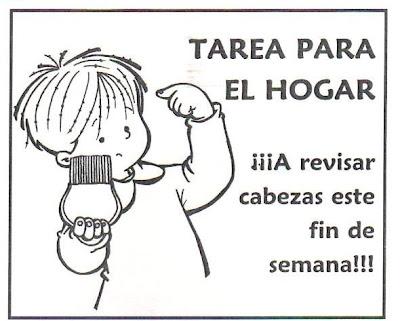 Fuente: Imágenes de la Revista Maestra Jardinera.