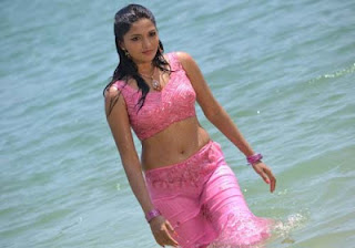 Actress Sunaina Wet Spicy Navel Stills