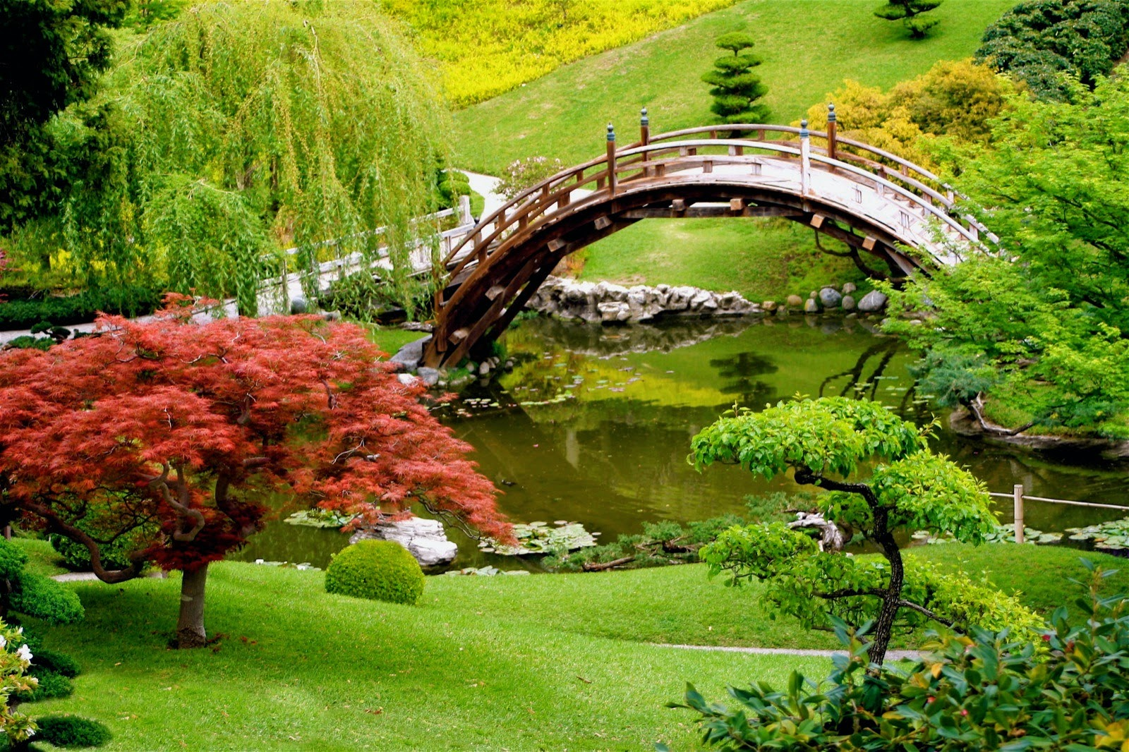 Tranquility Bridge in Tokoyo
