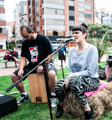 Newsletter-Oficial-Festival-Estéreo-Picnic-2015-Enero-26-31