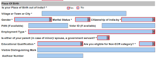 Step 2: How to fill offline form for passport image