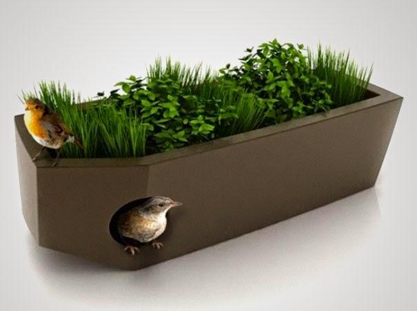 oiseau pot plante