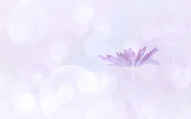 purple pastel flower.jpg