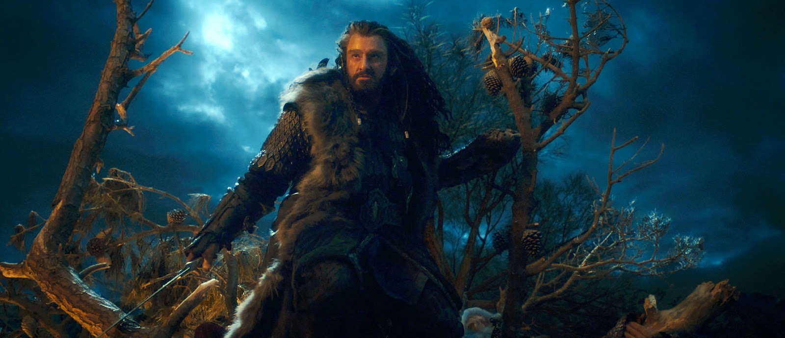 thorin oakenshield king pics