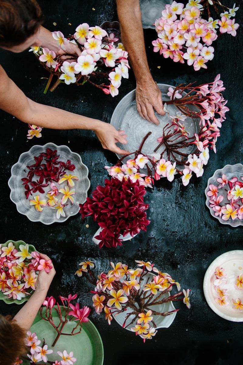 kukka-asetelmia