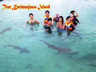 Pulau menjangan besar Karimunjawa