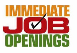Current Jobs Opening in India